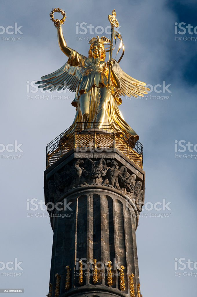 Goldelse stock photo
