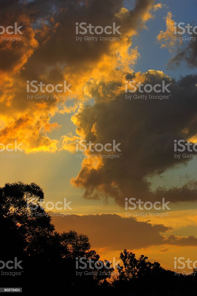 Golden african sunset royalty-free stock photo