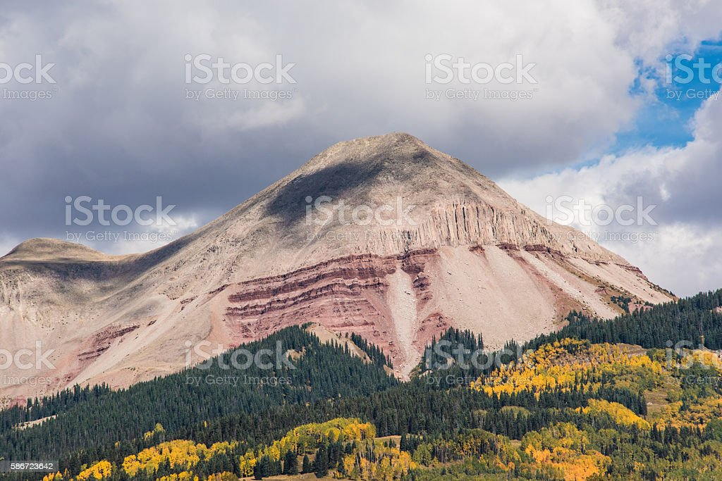 Golden Aspen Forest in the San Juan Mountains stock photo