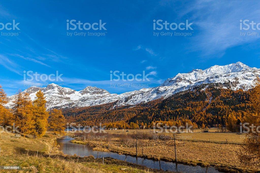 Golden autumn in Engadin stock photo