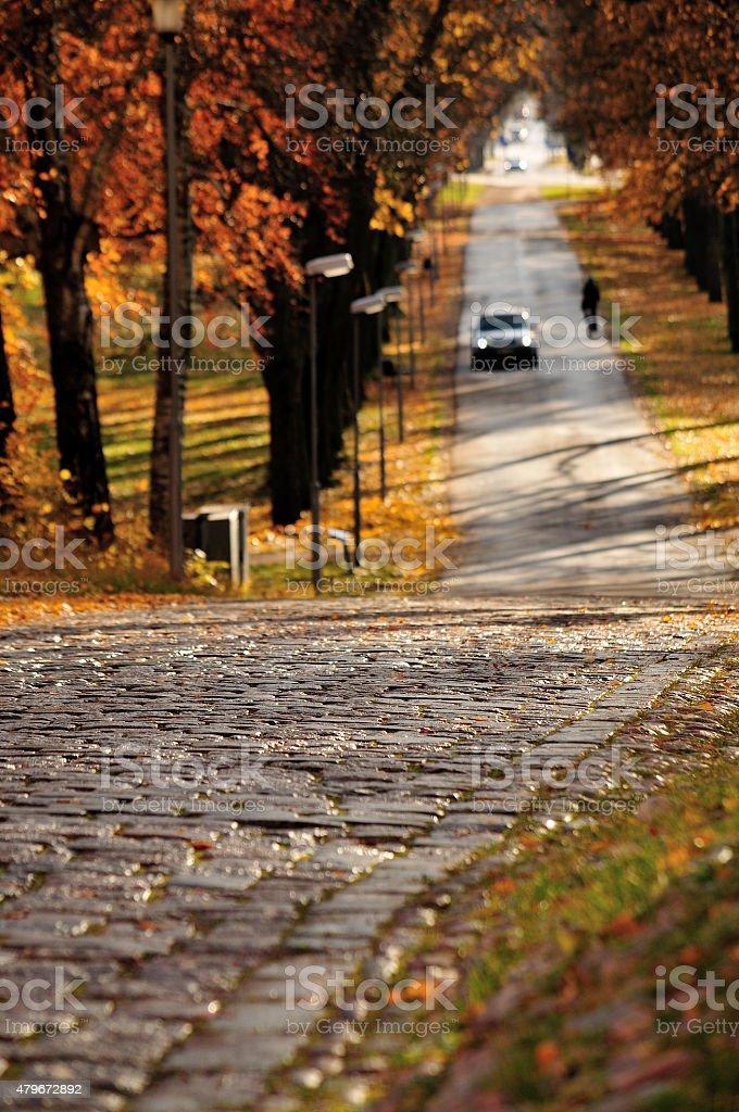 L'automne. photo libre de droits