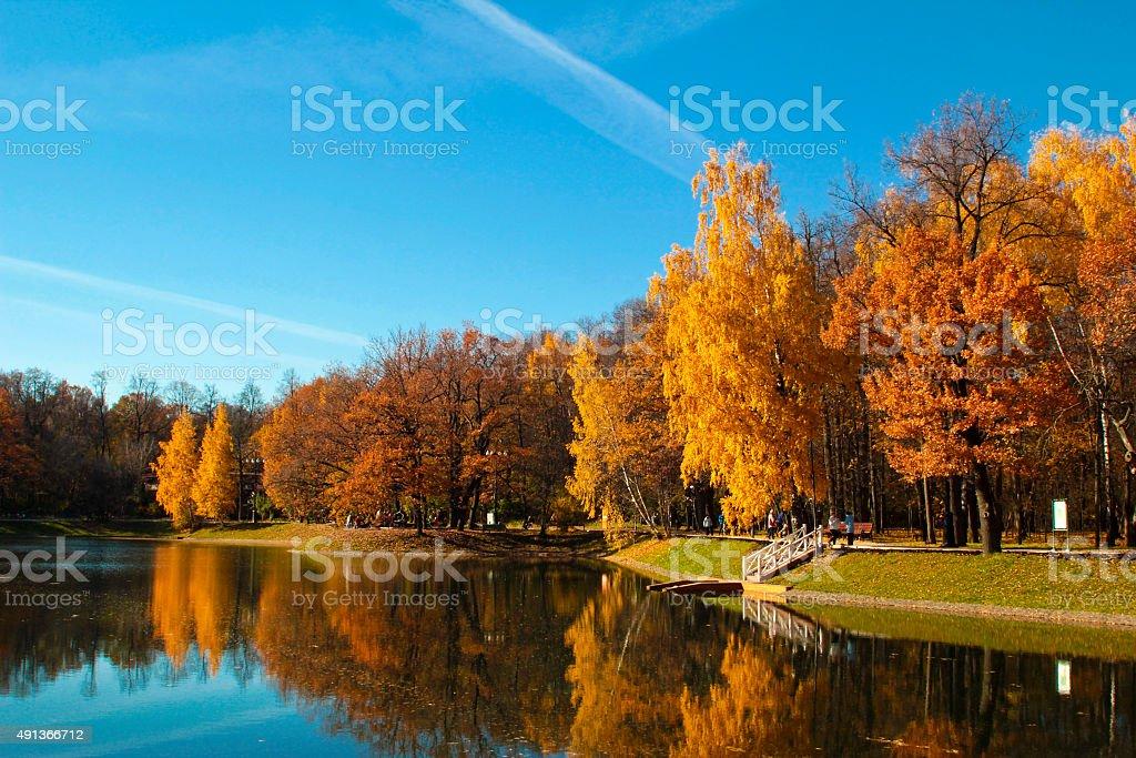 Golden autumn. stock photo