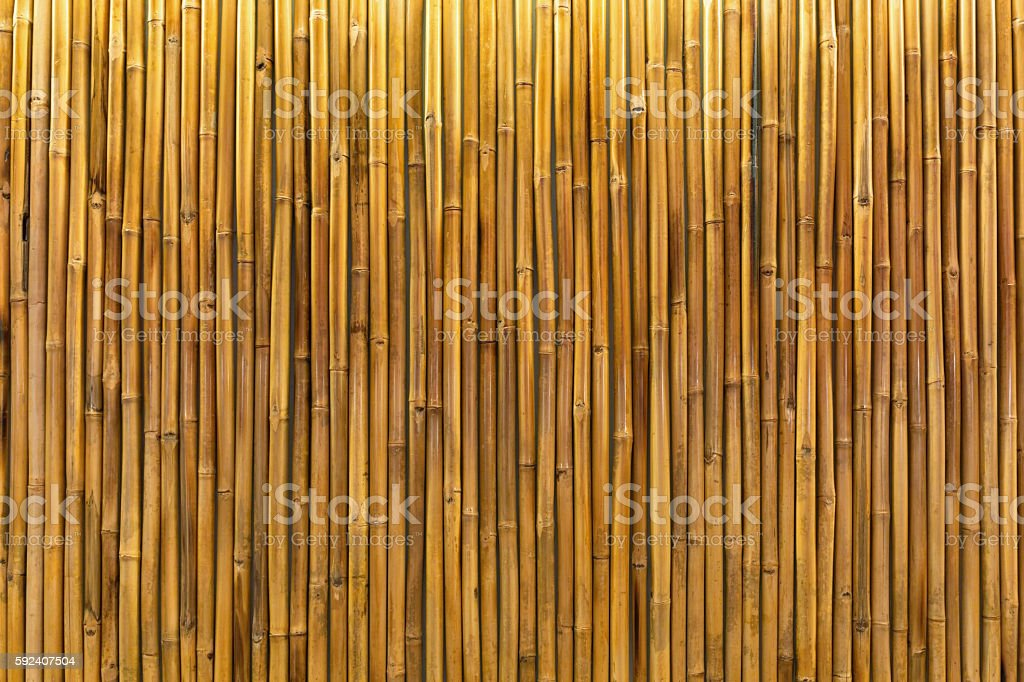 Golden bamboo wall or panel stock photo