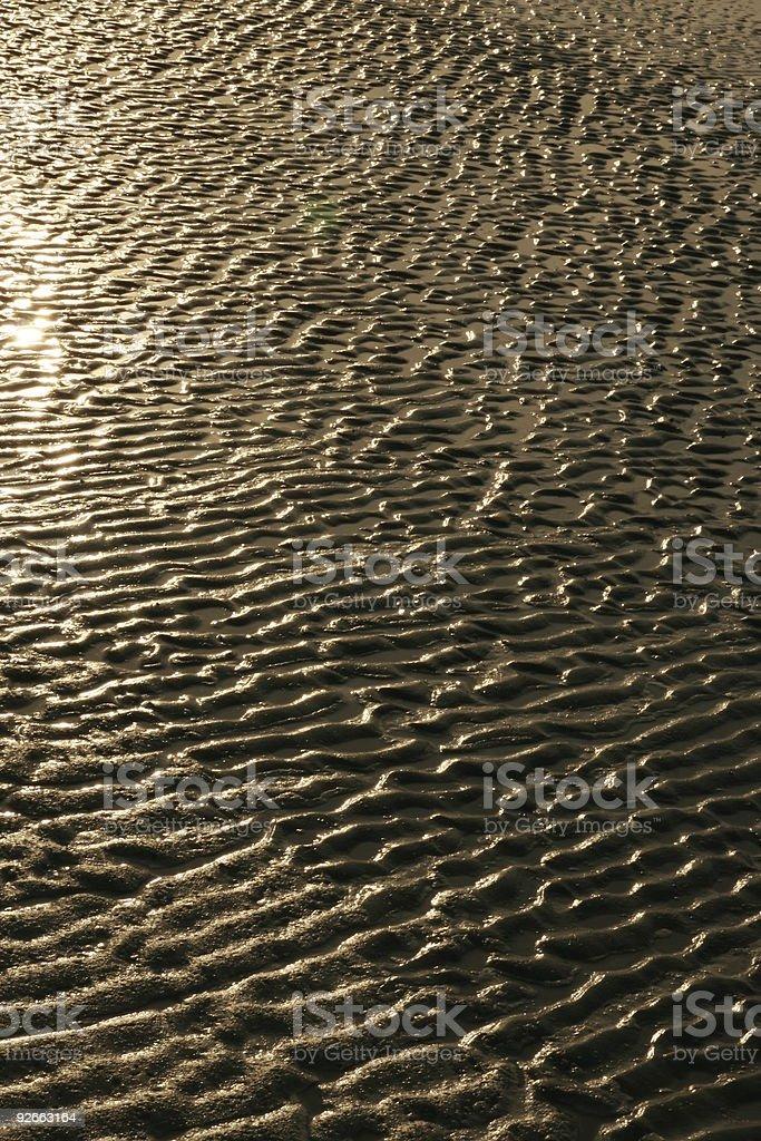 Golden beach background - 1 stock photo