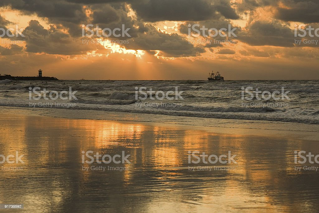Golden beach in the sunset royalty-free stock photo