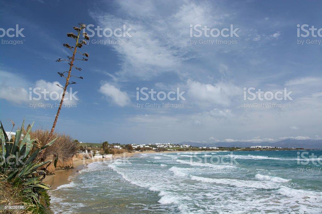 Golden Beach, Paros, Greece stock photo