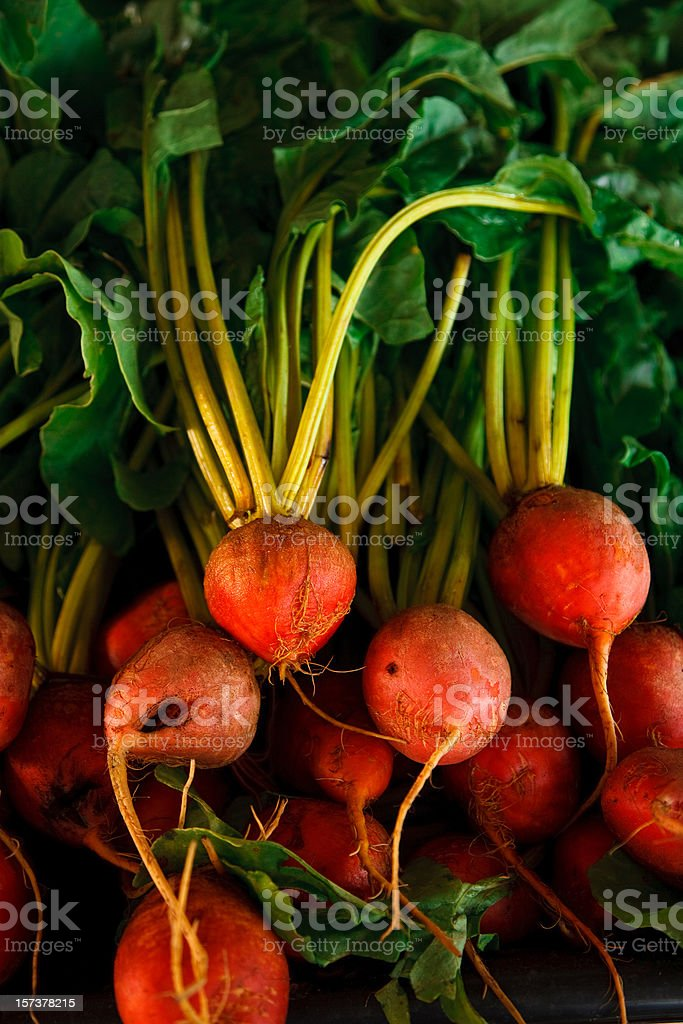 golden beets stock photo