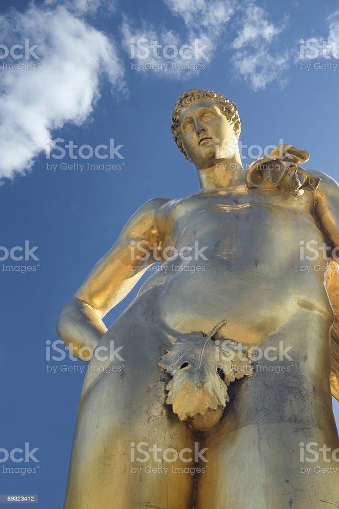 Golden boy royalty-free stock photo
