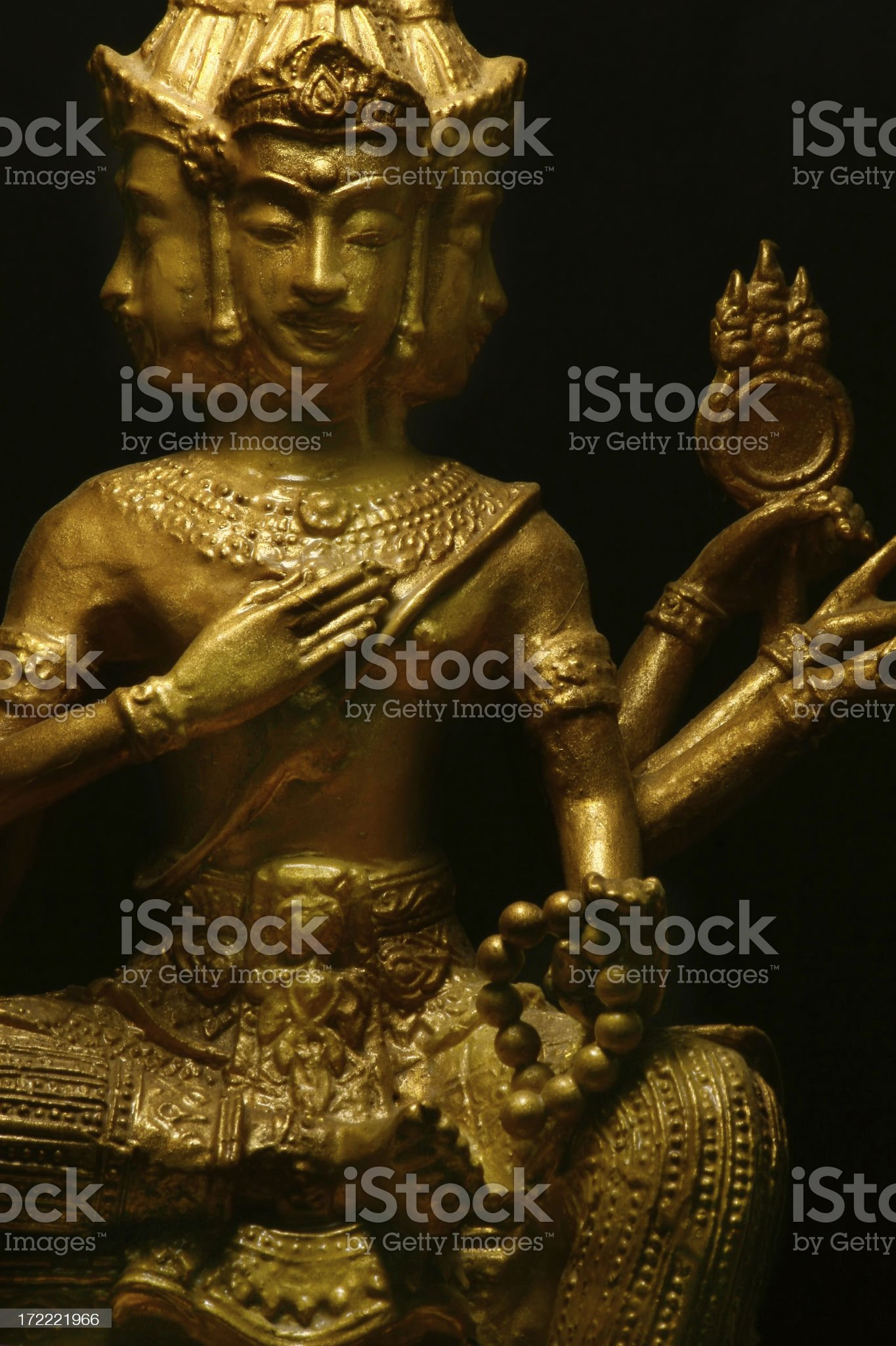 Golden Brahma royalty-free stock photo