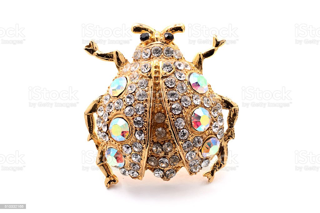 golden brooch in the form of a beetle stock photo
