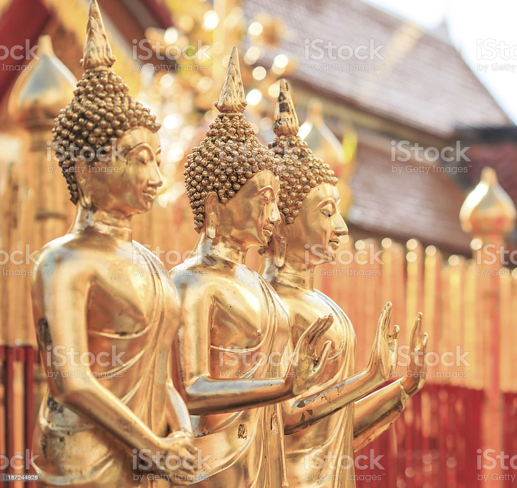 Golden Buddha in Temple Chiang Mai Asia Thailand royalty-free stock photo