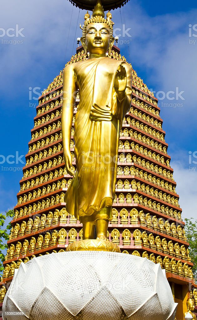 Golden Buddha. Standing on a lotus. royalty-free stock photo