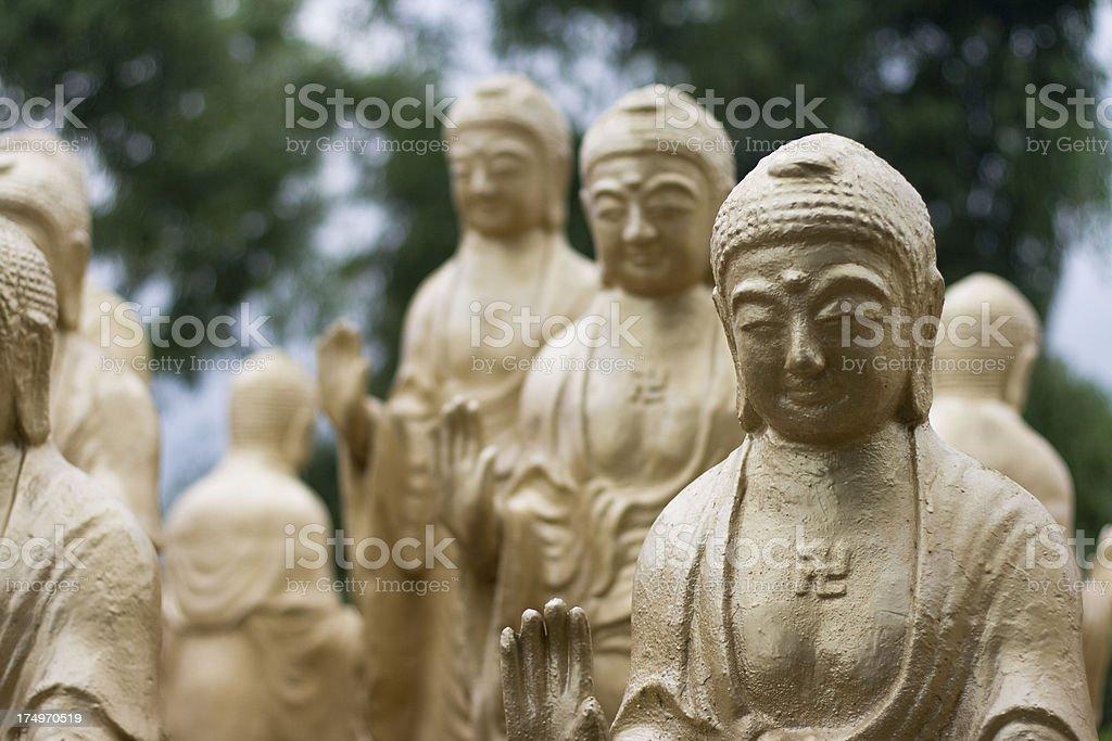 Golden Buddhas stock photo