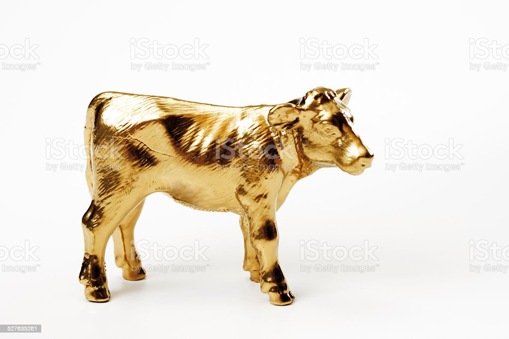Golden calf, close-up stock photo