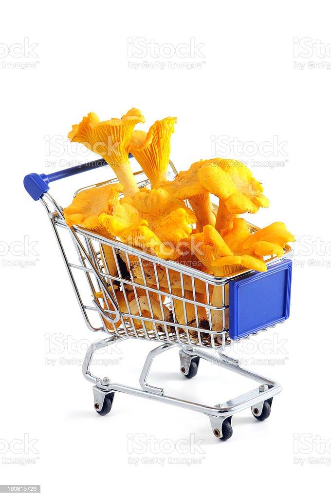 golden chanterelle mushroom (Cantharellus cibarius) in a shopping cart stock photo