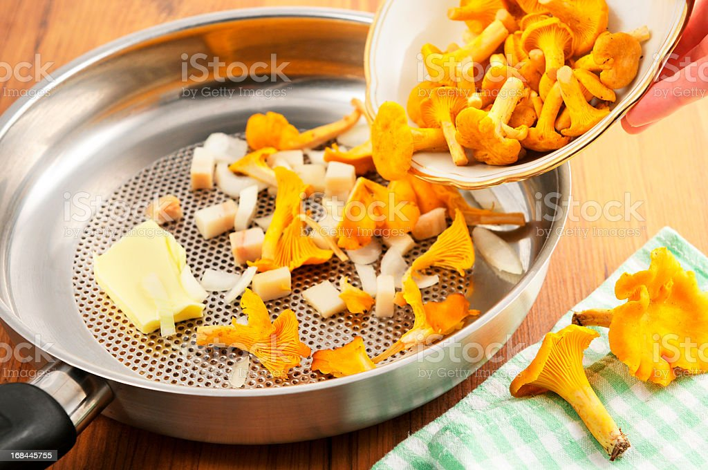 golden chanterelle mushroom (Cantharellus cibarius) in frying pan stock photo