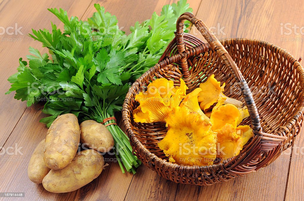 golden chanterelle mushroom (Cantharellus cibarius) with parsley and potatoes stock photo