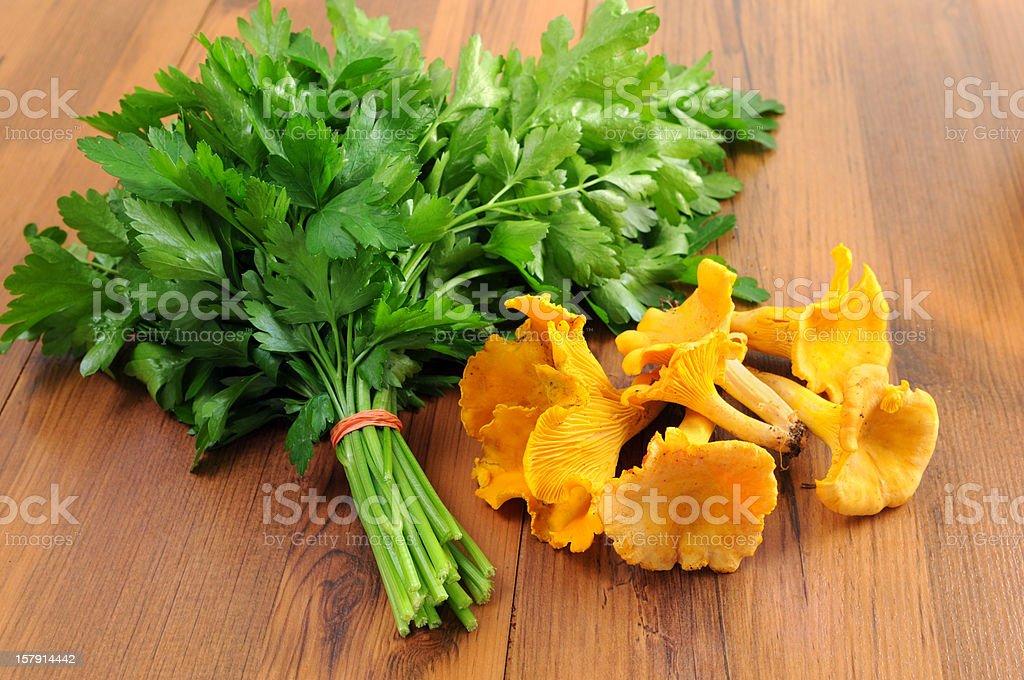 golden chanterelle mushroom (Cantharellus cibarius) with parsley stock photo