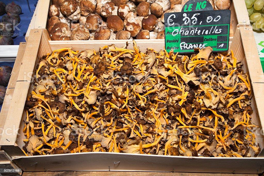 Golden chanterelle mushrooms outdoor market France stock photo