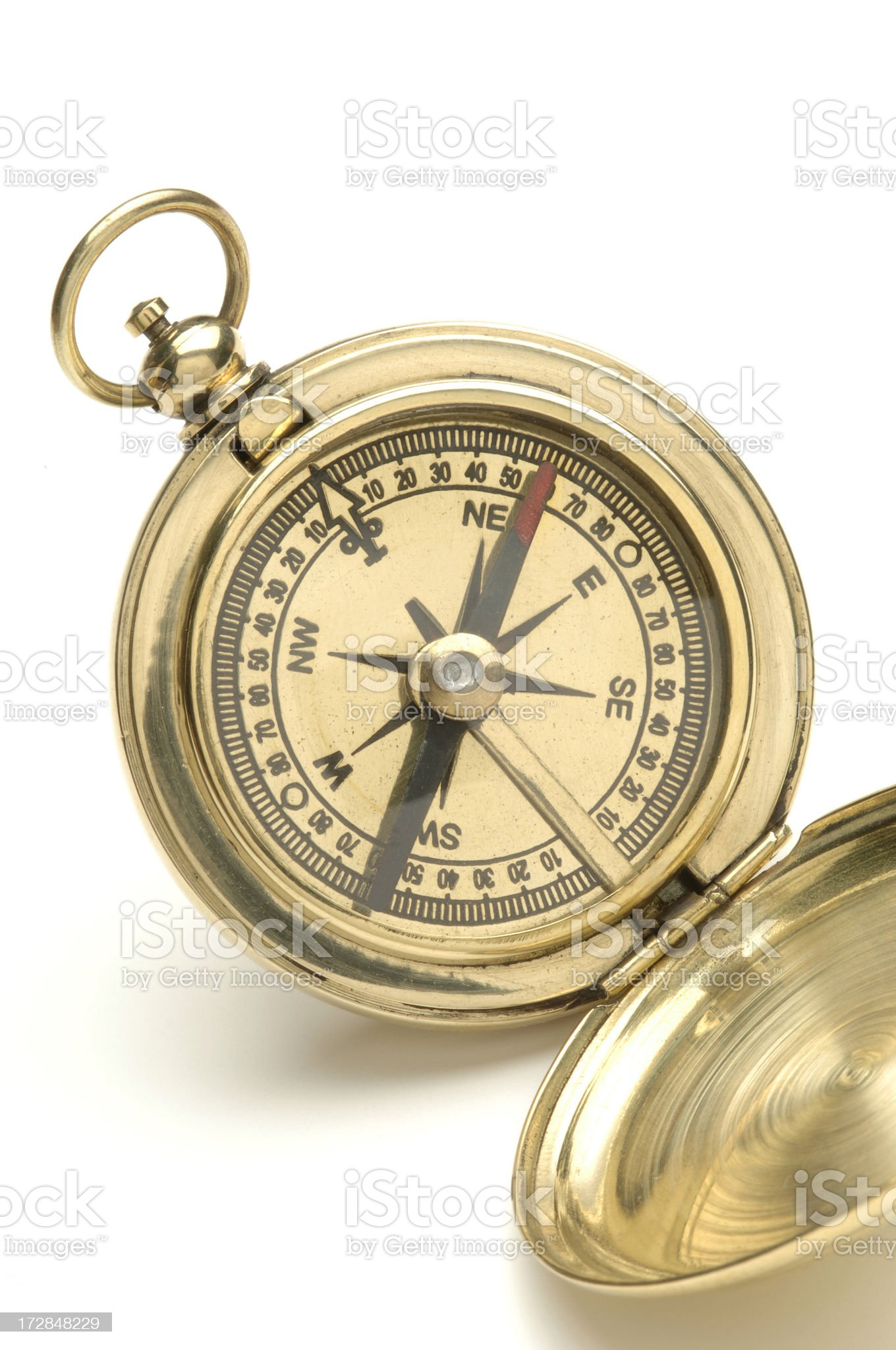 Golden Compass royalty-free stock photo