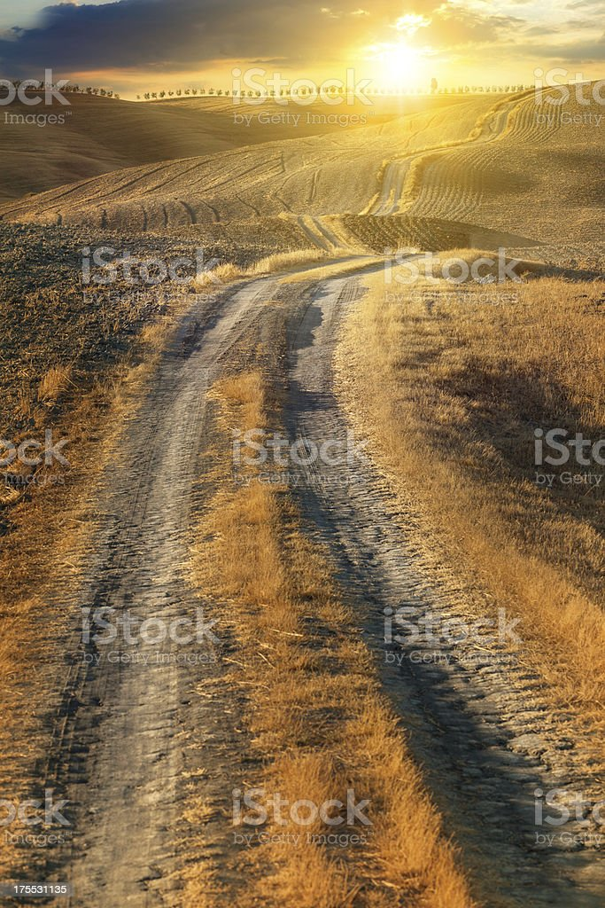 Golden country road royalty-free stock photo