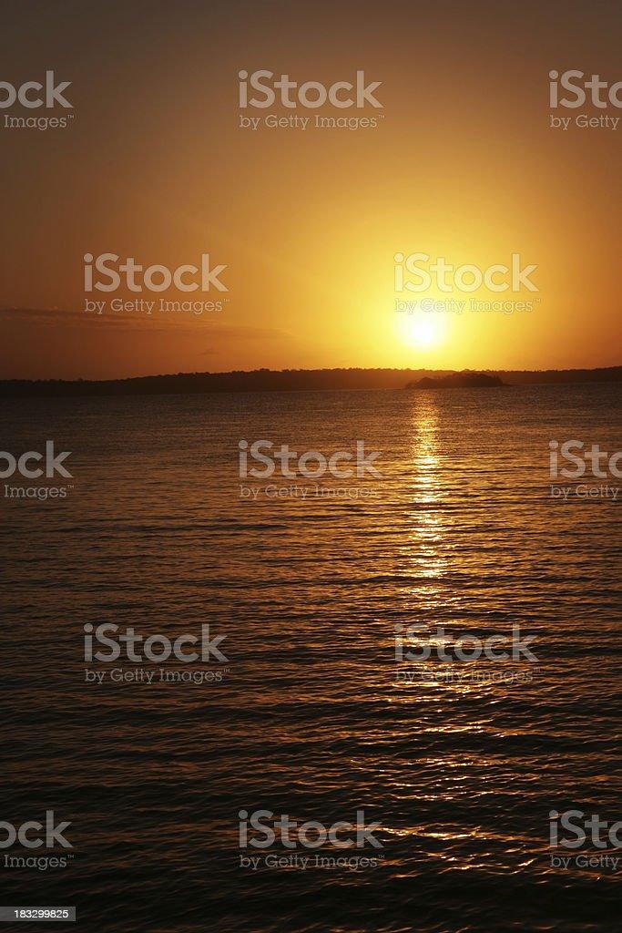 Golden Dawnfire royalty-free stock photo