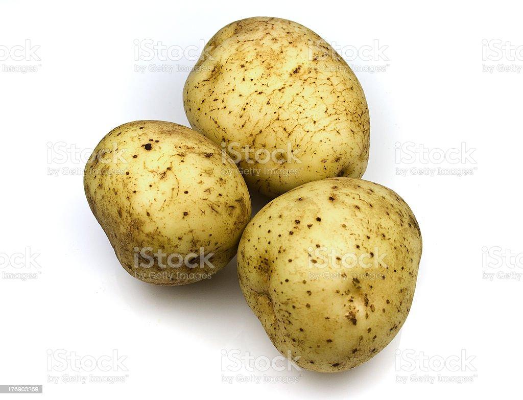Golden Delight Potatoes stock photo