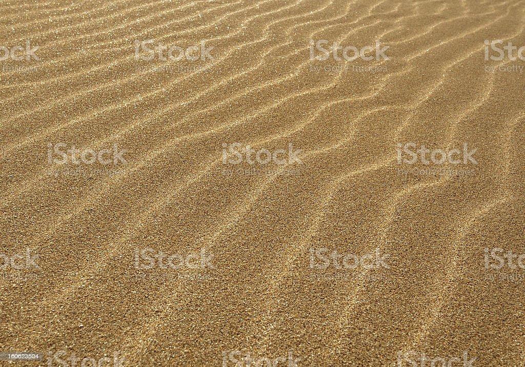 Golden dunes royalty-free stock photo