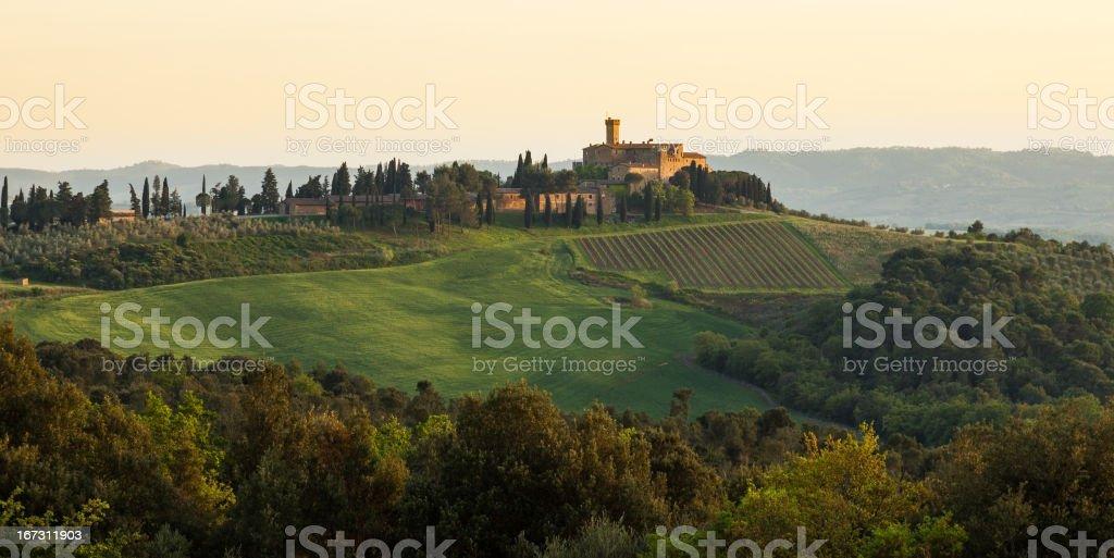 Golden dusk at Tuscany stock photo