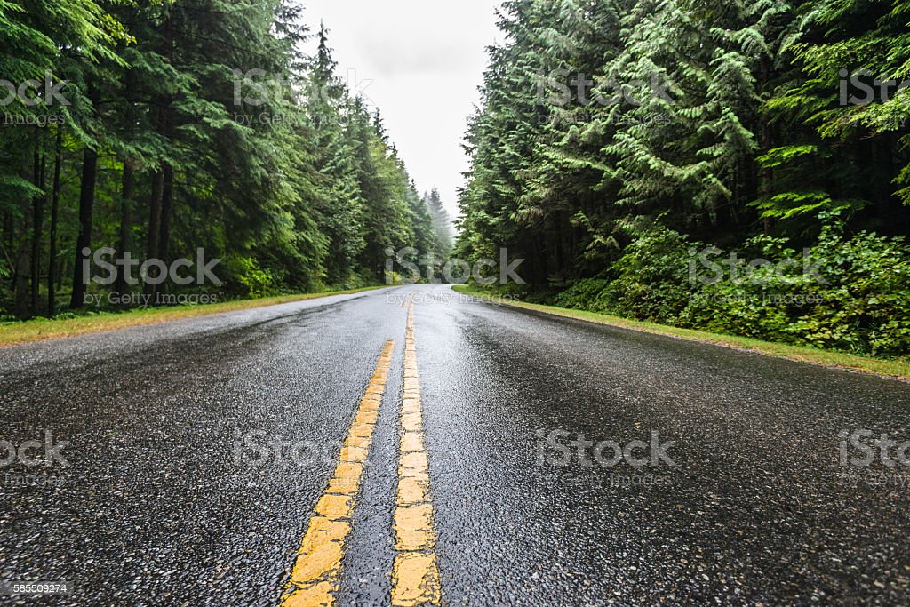 Golden Ears park road in British columbia stock photo