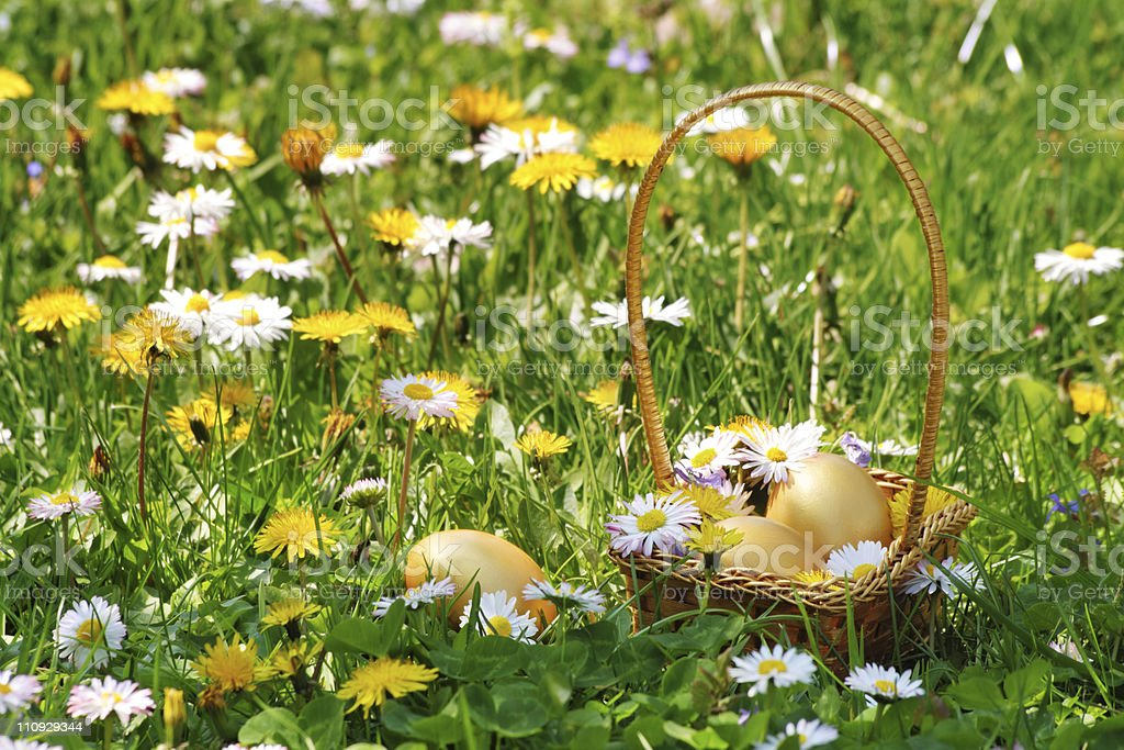 Golden Easter Egg Basket royalty-free stock photo