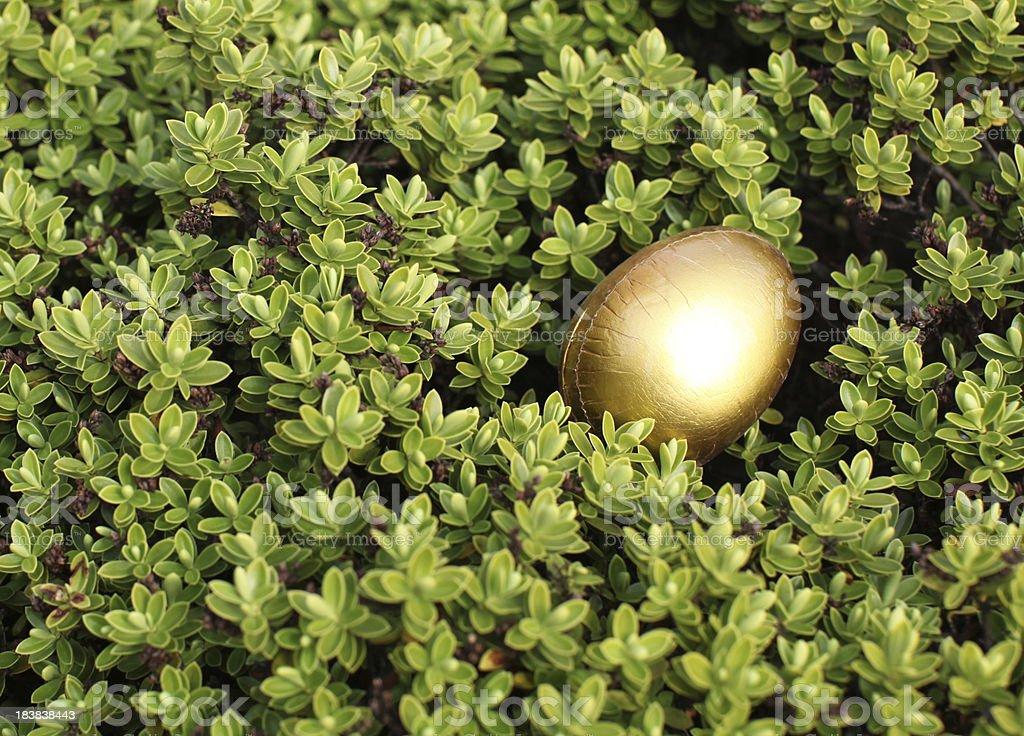 Golden Easter egg in a bush stock photo