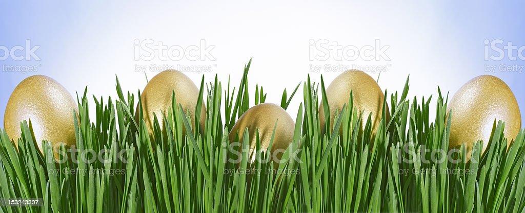Golden Easter Egg in the Green Grass stock photo
