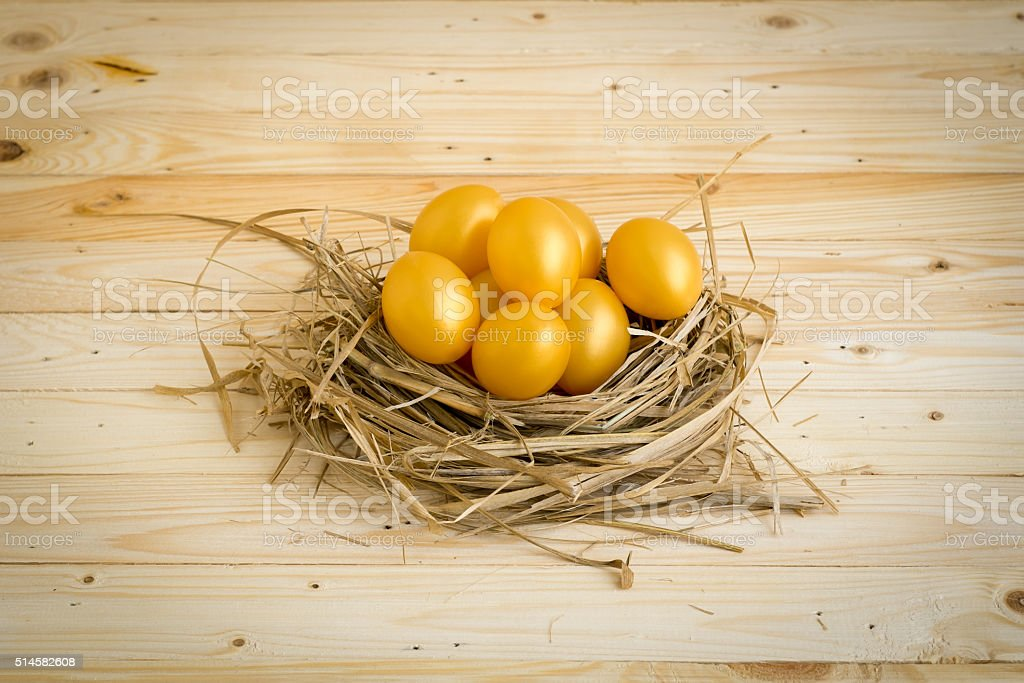 Golden Easter Egg Placed in the nest stock photo