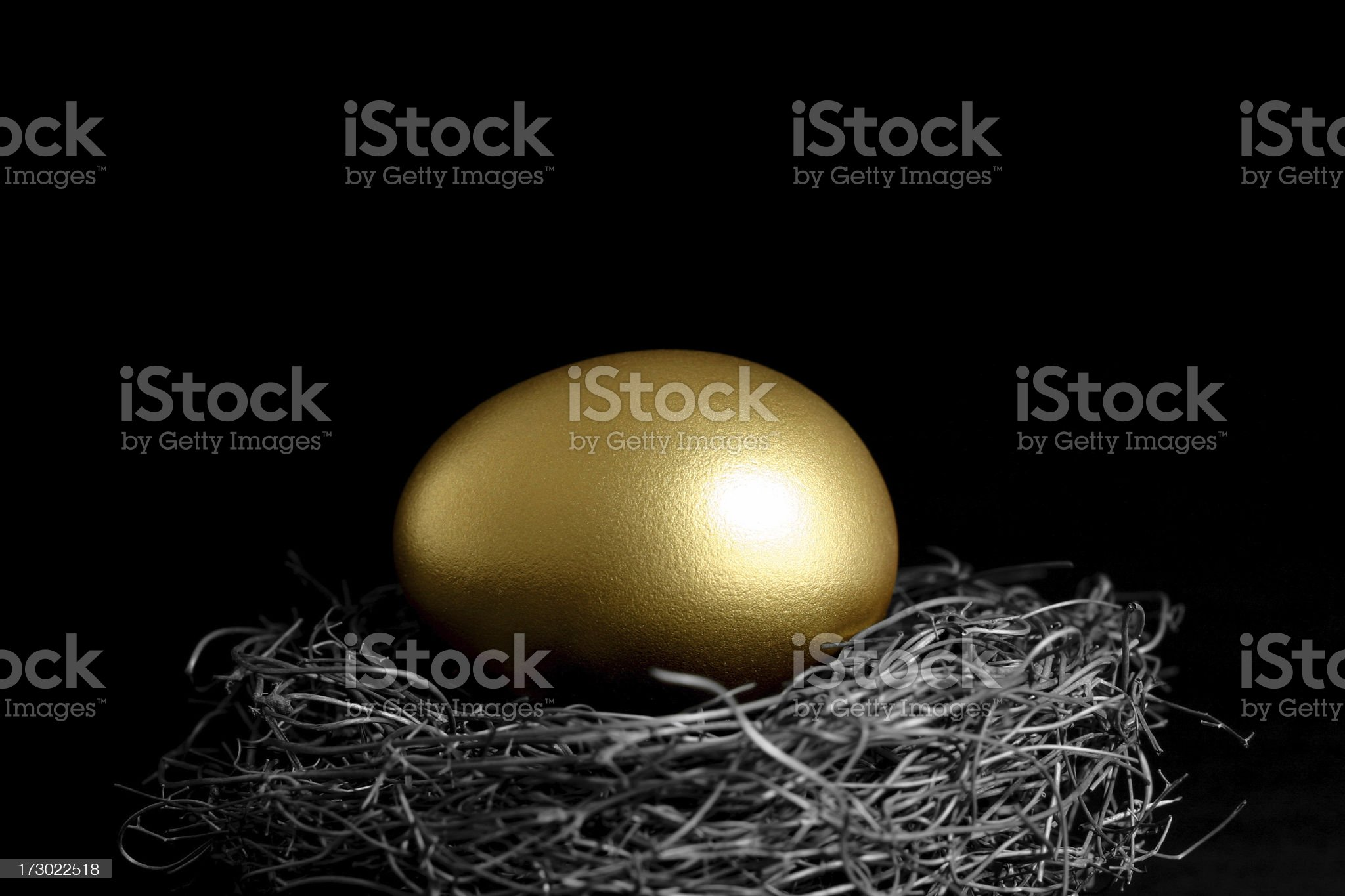 Golden Egg in a Nest on Black Background royalty-free stock photo