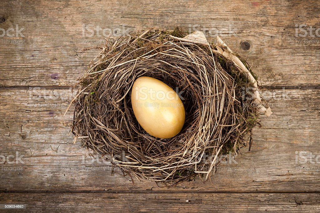 Golden egg in birdnest, high angle view stock photo