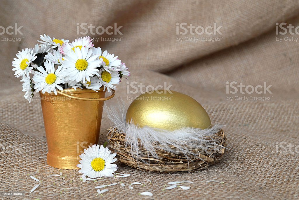 Golden egg in nest and spring flowers on canvas background stock photo