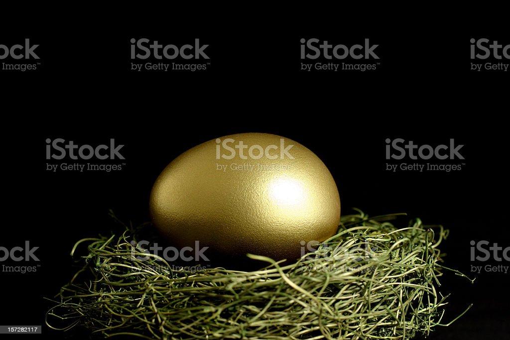Golden Egg in Nest on Black Background royalty-free stock photo
