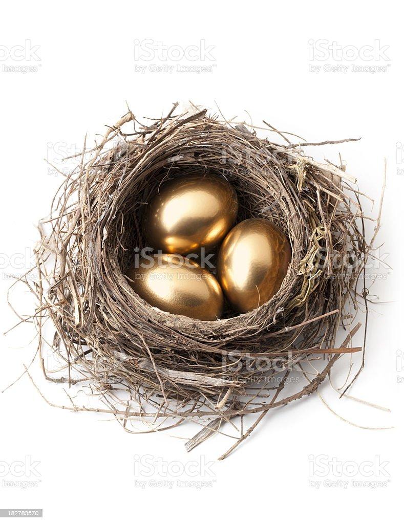 Golden eggs in nest. stock photo