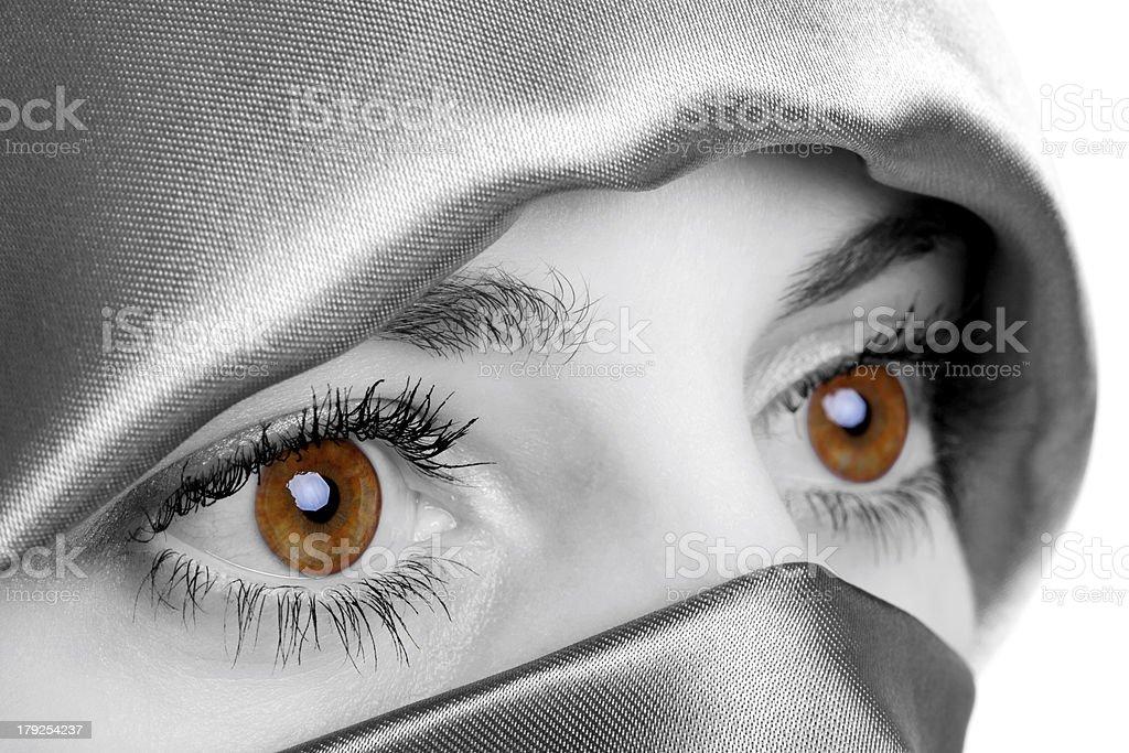 Golden Eyes royalty-free stock photo