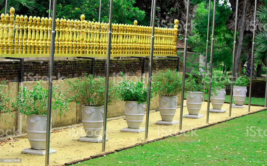 Golden fence in the Buddhist temple stock photo