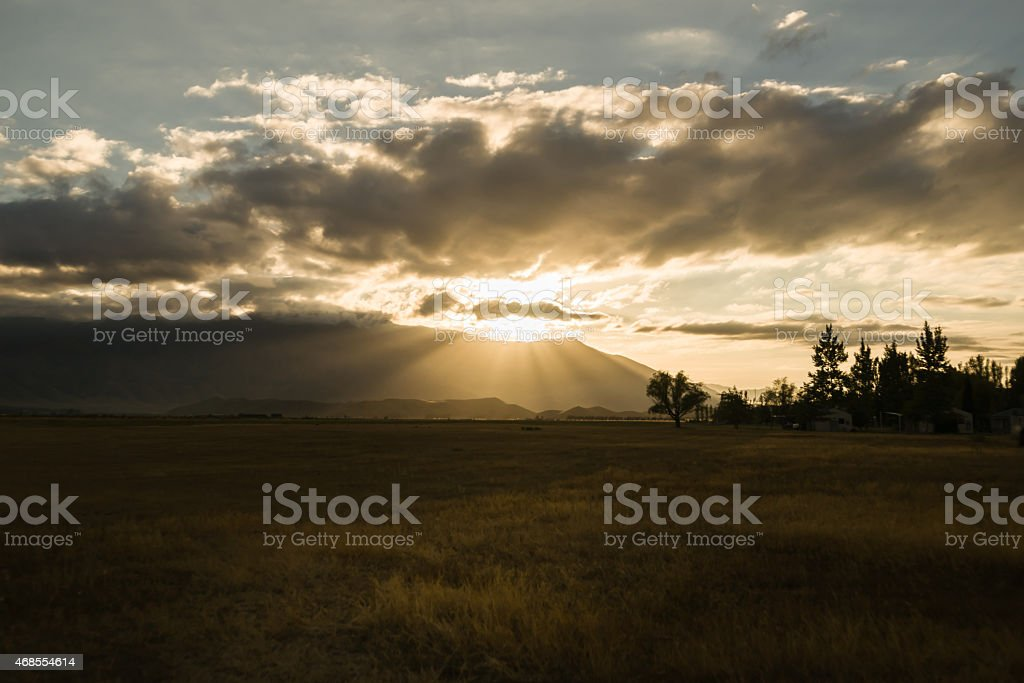 Golden field under moody overcast sky at sunrise. stock photo