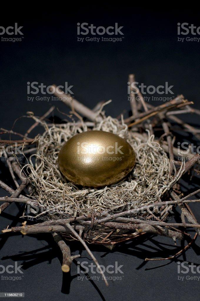 Golden Financial Nest Egg Concept royalty-free stock photo
