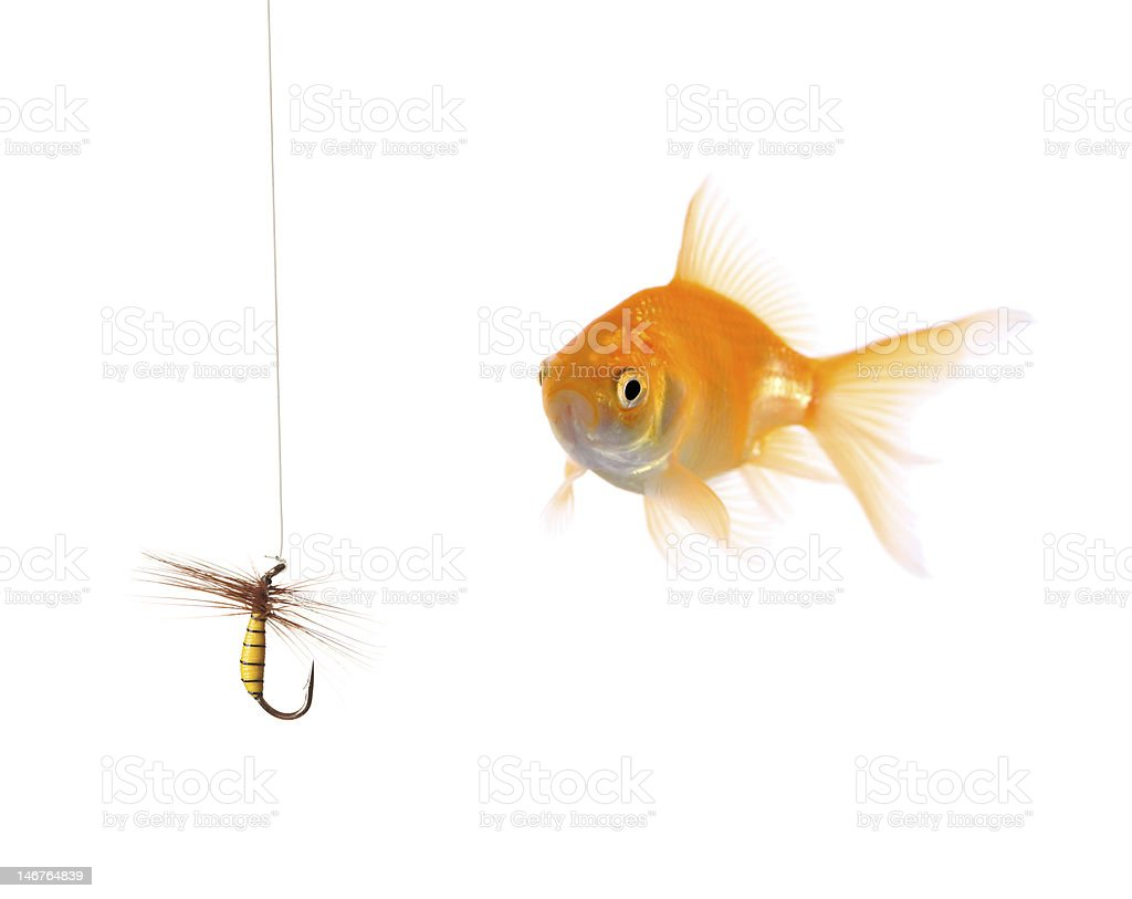 Golden fish and a fishing bait stock photo