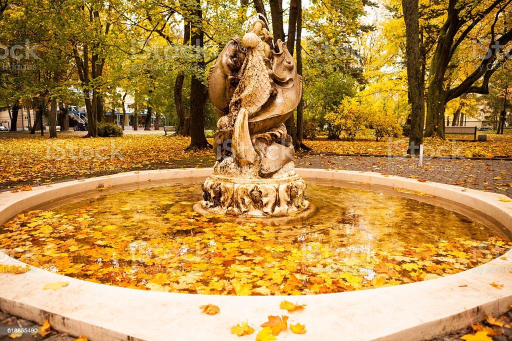 Golden fish fountain stock photo
