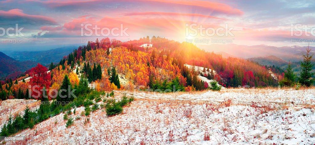 Golden Forest Ridge Sokilsky stock photo