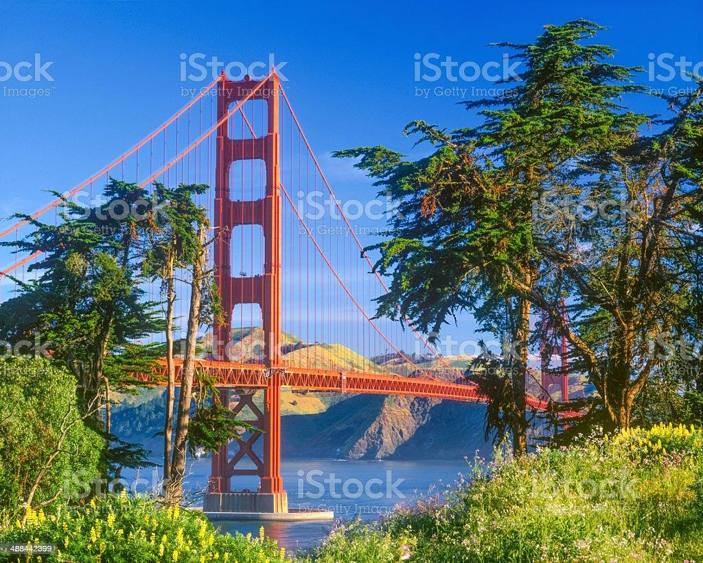 Golden Gate Bridge, San Francisco, CA (P) stock photo