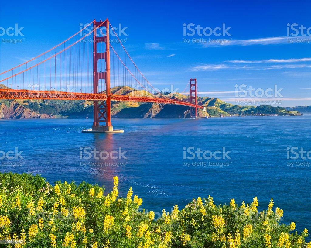Golden Gate Bridge, San Francisco, CA royalty-free stock photo