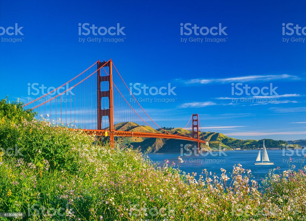Golden Gate bridge with spring flowers and recreational boat, CA stock photo