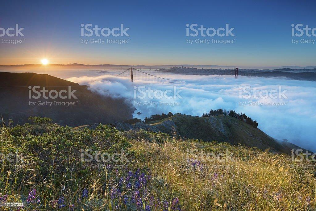 Golden Gate Fog stock photo
